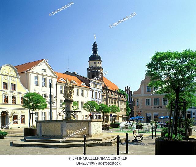 Altmarkt Old Market with old citty hall Cottbus Brandenburg Germany