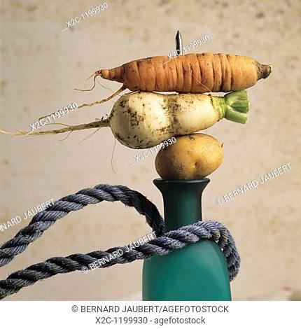 Variety of vegetables, bottle, rope