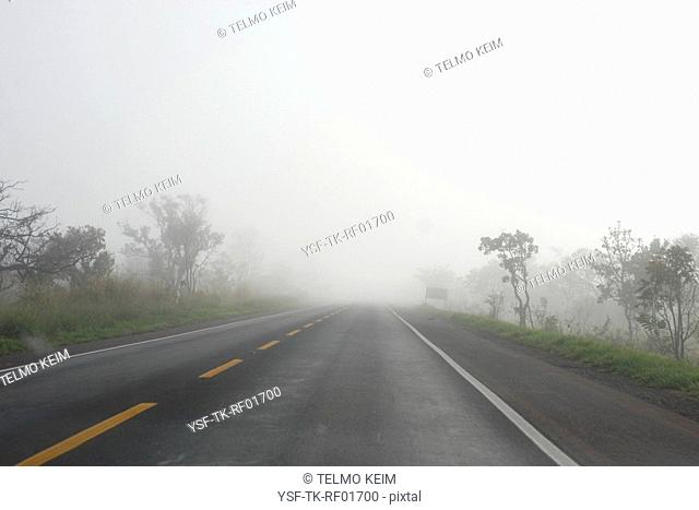 Road, Fog, São Paulo, Brazil