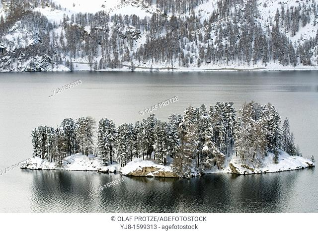 Winter mountain landscape and small island in the Silsersee near Sils-Maria in the Engadin, Switzerland
