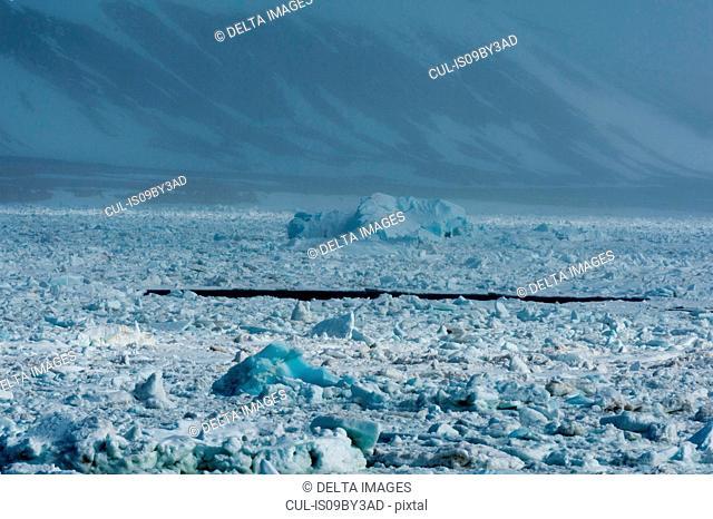 Arctic ocean sea ice and coastal mist, Wahlenberg fjord, Nordaustlandet, Svalbard, Norway