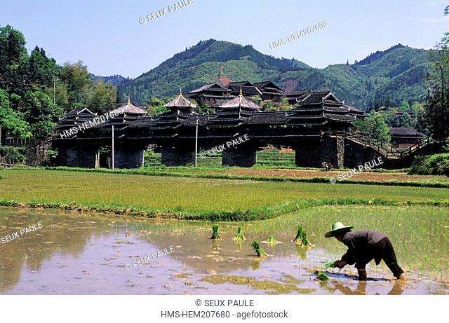 China, Guangxi province, Dong homeland, Chengyang, Wind and Rain Bridge