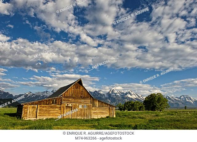 Old barn at Mormon Row, Grand Teton National Park, Wyoming, USA