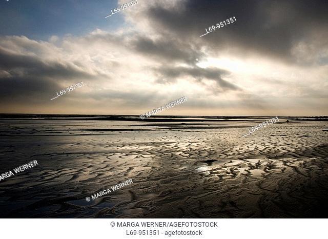'Kniepsand', beach on island Amrum in November, North Frisia, Schleswig-Holstein, Germany