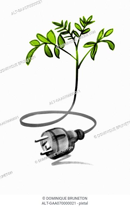 Tree sapling connected with electric cable and plug
