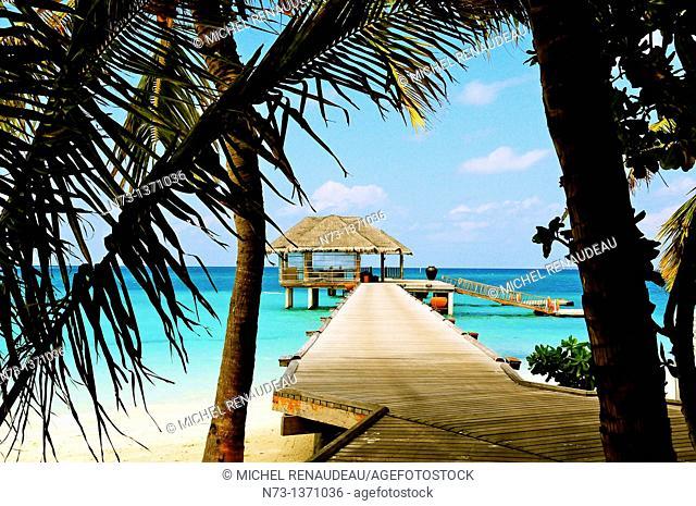 Indian Ocean, Maldives, South Ari Atoll, Dhidhoofinolhu, Diva Resort, Naiad
