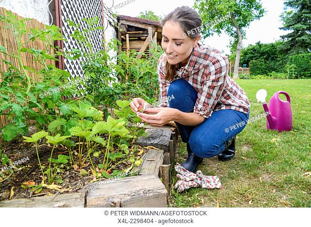 Young woman at garden work, Austria, Lower Austria
