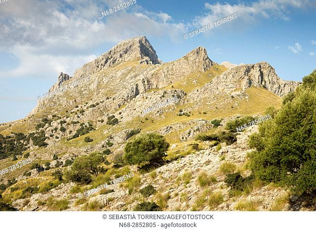 Serra de na Rius, Majorca, Balearic Islands, Spain