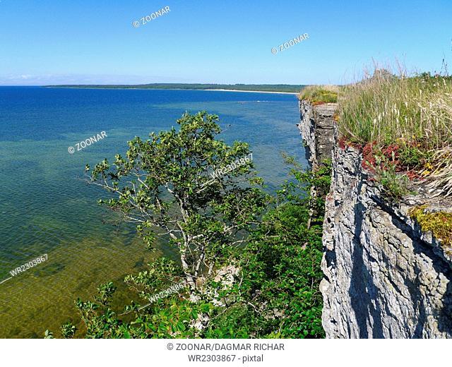 coastline with cliffs near tallinn, estland