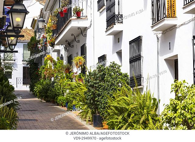 Typical street with flowers, Benalmadena. Málaga province, Costa del Sol, Andalusia. Southern Spain Europe