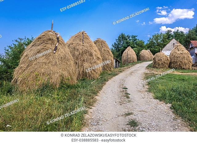 Haystacks on a farm between Guca town and Vuckovica village in Lucani municipality, Moravica District of Serbia