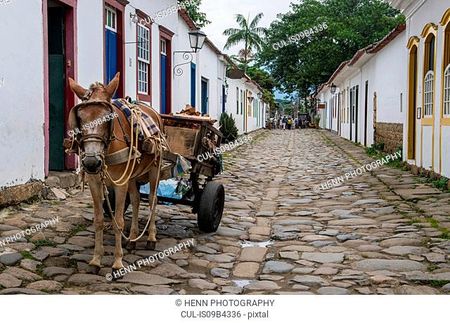 Delivery on the streets, Paraty, Costa Verde, Rio de Janeiro, Brazil