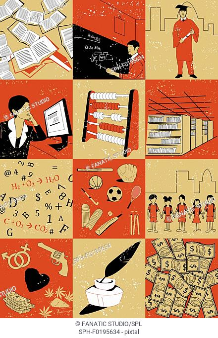 Lifecycle of a person in education, illustration