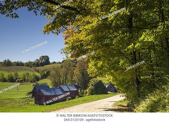 USA, New England, Vermont, Reading, Jenne Farm, autumn
