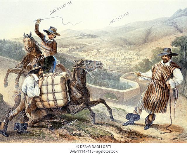 Mule driver, Mexico 19th century.  Mexico City, Biblioteca Nacional De Antropología E Historia (Library)