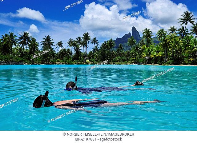 Snorkellers, St. Regis Bora Bora Resort, Bora Bora, Leeward Islands, Society Islands, French Polynesia, Pacific Ocean
