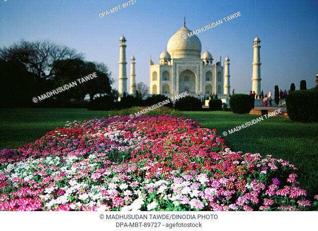Garden at Taj Mahal Seventh Wonder of The World , Agra , Uttar Pradesh , India