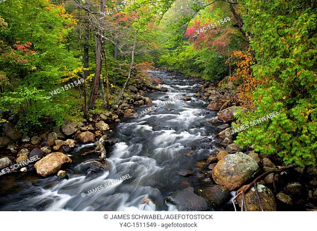 Early fall color on the North Branch Moose River in the Adirondack Mountains of New York State