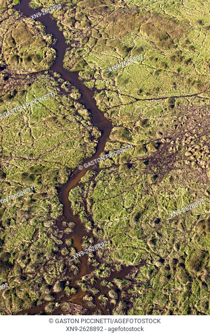 Grassy marshland with animal trails, aerial view, Okavango Delta, Moremi Game Reserve, Botswana. The vast inland delta is formed from the Okavango River