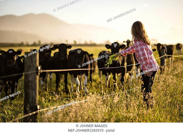 Girl at cow pasture