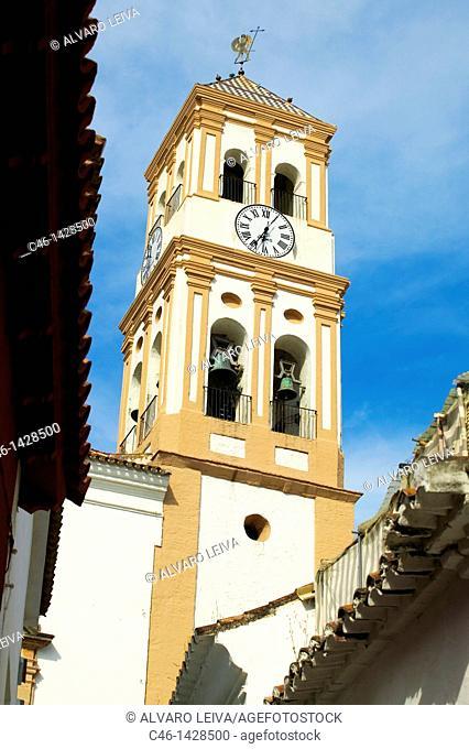 Nuestra Sen~ora de la Encarnacion church, Marbella  Costa del Sol, Ma'laga province  Andalusia, Spain