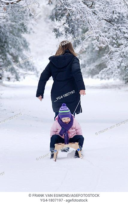 Sled pulling in the snow, family fun