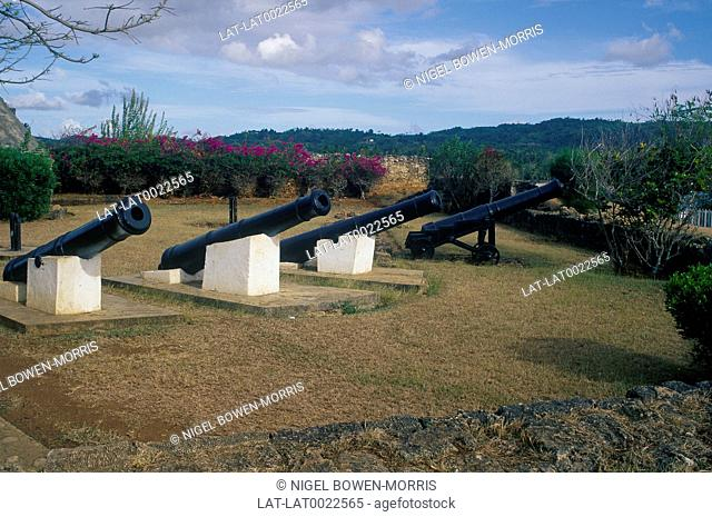 Fort James. Cannons. Trees and plants
