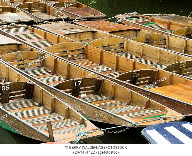 Punts ready for hire on the river Cherwell in Oxford, England
