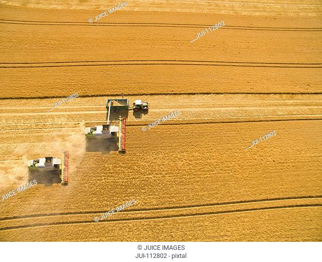 Aerial view of combine harvesters and tractor trailer in sunny golden barley field