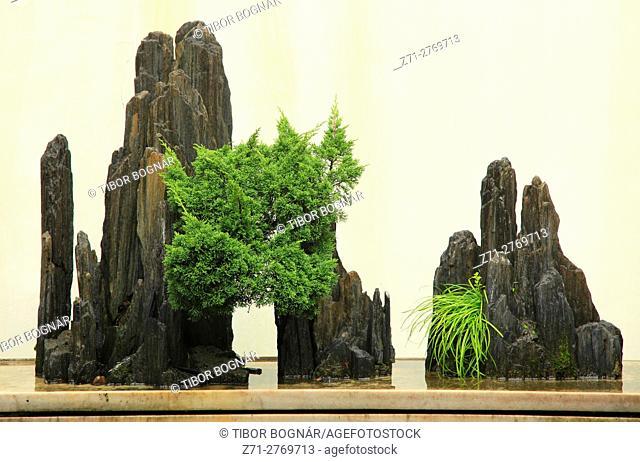 China, Jiangsu, Suzhou, Museum, Zhong Wang Fu Mansion, garden,