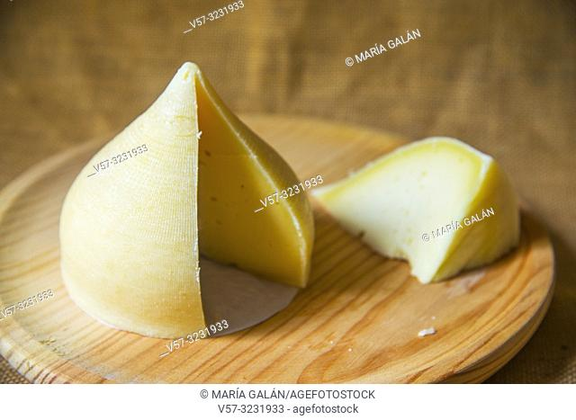Tetilla cheese cut in pieces on wooden dish. Galicia, Spain
