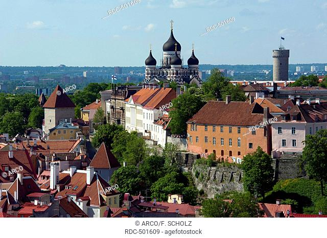 Lower and upper town, Old town, Tallinn, Estonia, Baltic states, Europe / View from St. Olaf's Church