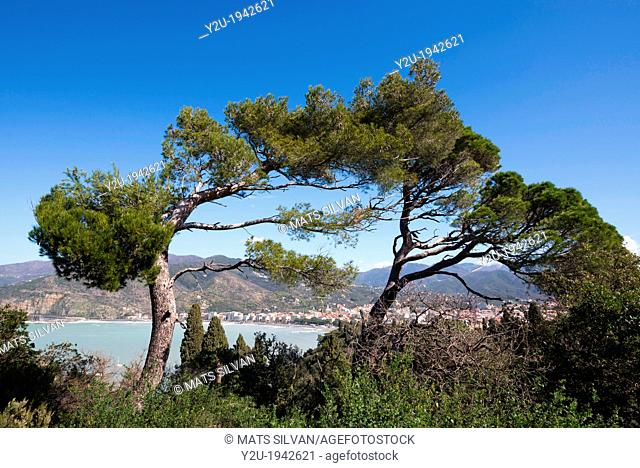 Old village sestri levante with the sea and blue sky and with trees in liguria italy