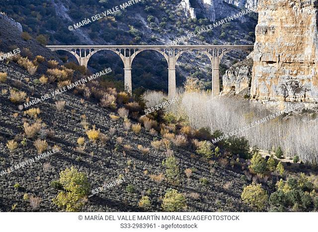 Viaduct in Riaza gorge. Segovia. Castilla Leon. Spain. Europe