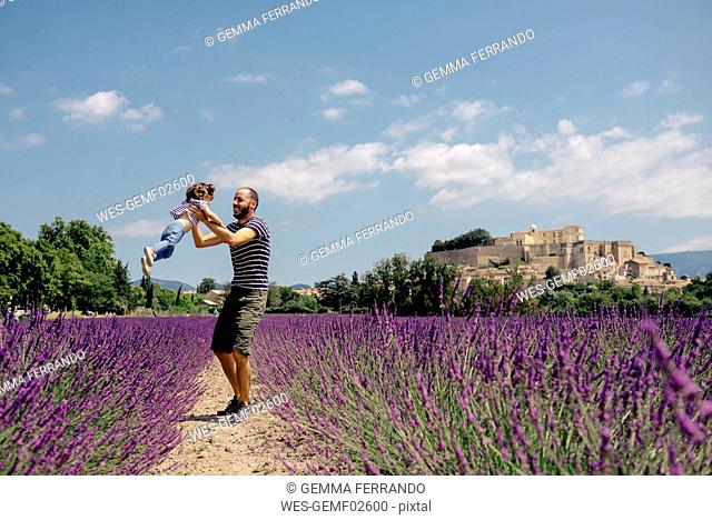 France, Grignan, father and little daughter having fun together in lavender field