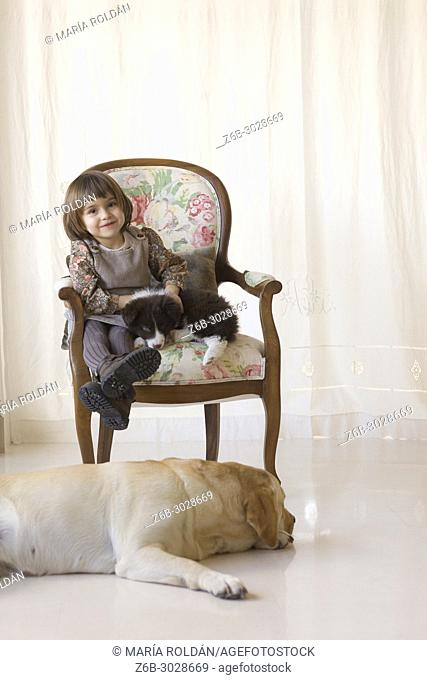 little girl sitting on an armchair with a puppy, a big dog is there too
