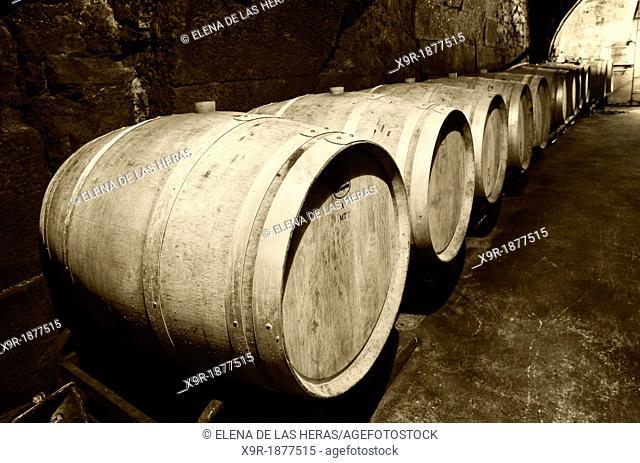 Casks resting in a cellar  Lanciego  Rioja alavesa wine route  Alava  Basque country  Spain