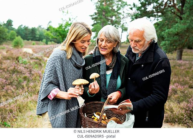 Mid adult woman with senior parents and basket of mushrooms