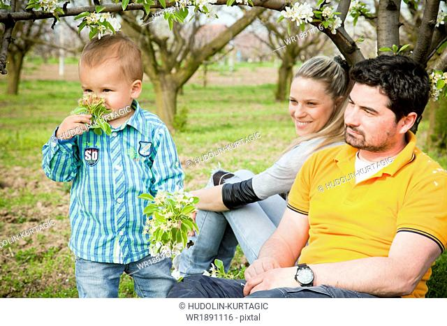 Toddler boy and parents picking flowers, Austria