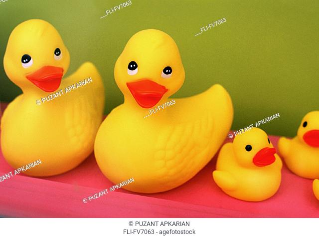 FV7063, Puzant Apkarian, Rubber Duckies in a Row