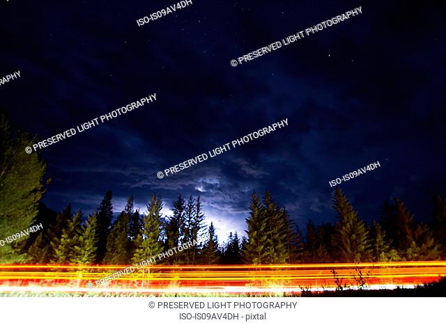 Car light trails on forest road at night, Whiteswan Lake Provincial Park, Canal Flats, British Columbia, Canada