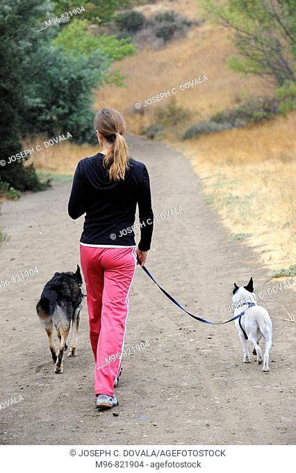 Woman walking mixed breed dogs on trail, Thousand Oaks, California, USA