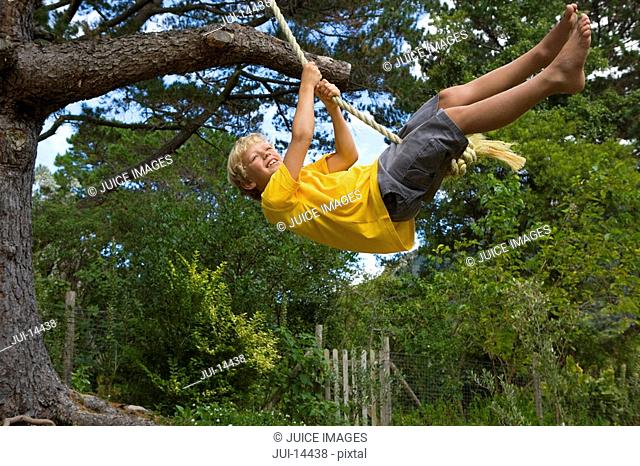Boy 10-12 on rope swing, smiling, low angle view