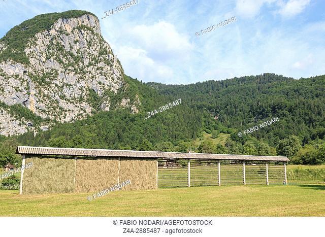 Triglav national park, Bohinj valley, Julian Alps, Slovenia, Europe