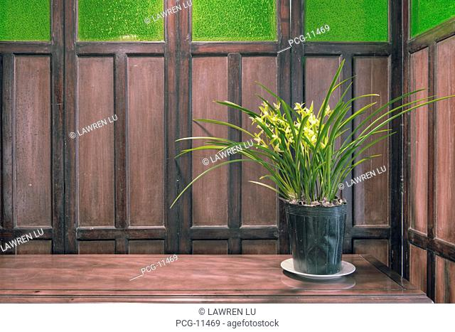 Retro style Chinese folding screen in living room with yellow Cymbidium orchid flowers