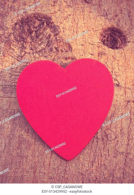 Heart of love in Valentine's day on tree
