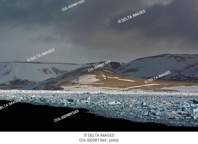 Coastal landscape and shorefast ice, Wahlenberg Fjord, Nordaustlandet, Svalbard, Norway