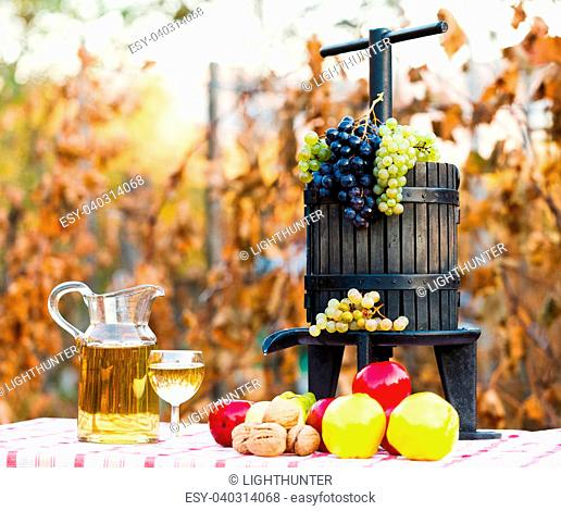Autumn harvest concept, grape, autumn fruits and wine with juice squeezer on rustic table