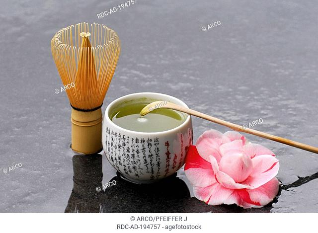 Japanese Matcha tea, 'Chasen' bamboo broom, bamboo spoon, Camellia blossom, Camellia japonica
