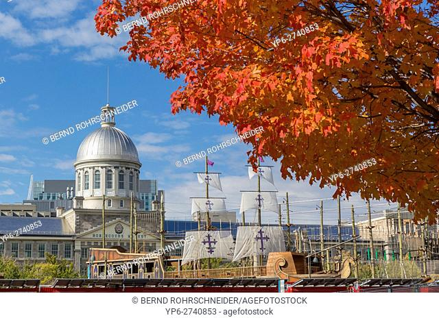 Bonsecours market at old harbour (vieux port) and autumnal tree, Montreal, province Quebec, Canada